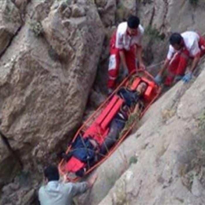جسد فرناز دولتخواه