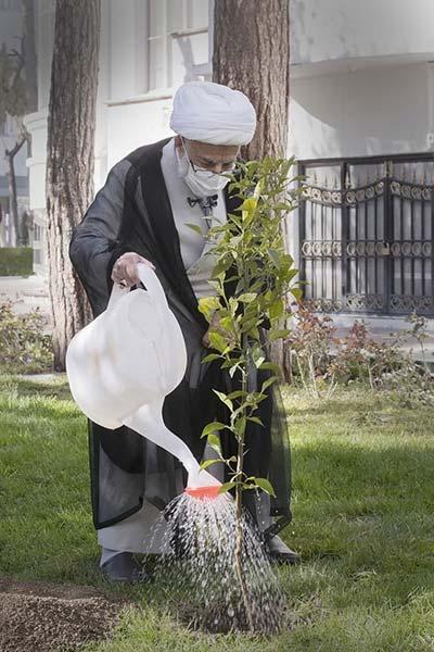 آیتالله جنتی حین درختکاری