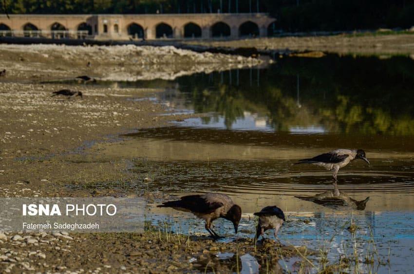 خشک شدن زاینده رود