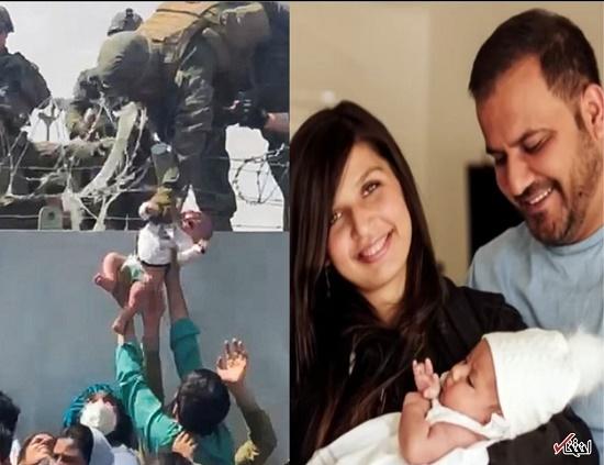 نوزاد کابلی