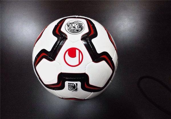 توپ لیگ برتر چهاردهم با یوزپلنگ ایرانی